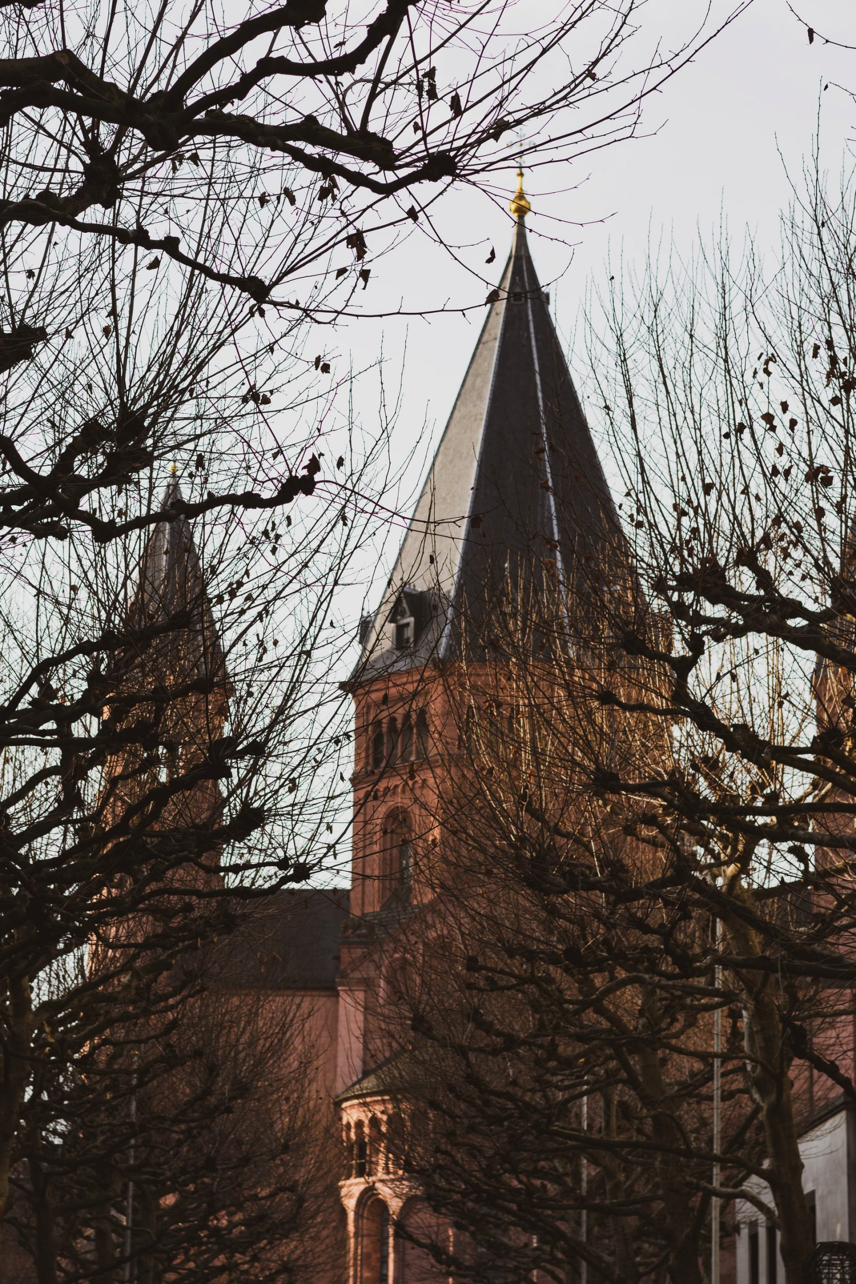 Mainz 1945 und heute – Eine Online-Ausstellung des Stadthistorischen Museums Mainz